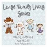 Large Family Living Series:  Planning from the Beginning