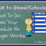 Back to {Home}schooling: What To Do When Your Schedule No Longer Works