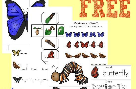 FREE Butterflies Tot & PreK/K Pack {35 pages}