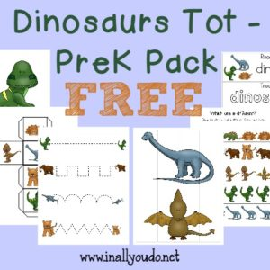 What kid doesn't love Dinosaurs? Now your little ones can enjoy learning about them with this FUN Dinosaur Tot Pack!! {31 pages} :: www.inallyoudo.net