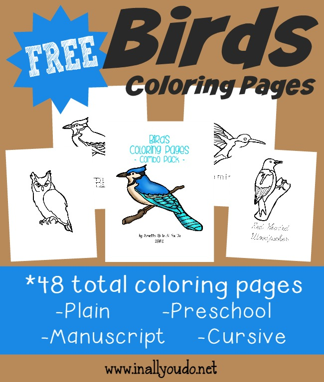 types of birds coloring pages - photo#17