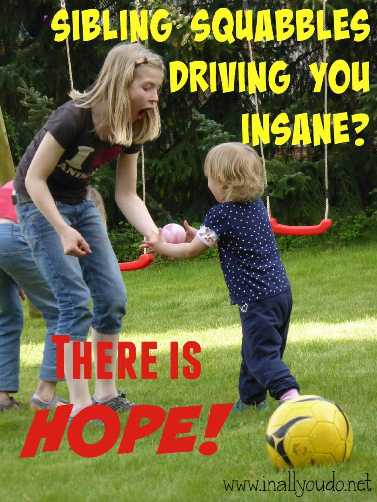 I don't know about you, but nothing gets under my skin more than seeing my kids treat each other poorly. Find out how you can help stop those squabbles now! :: www.inallyoudo.net