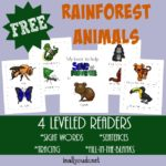 Rainforest Emergent Readers {4 levels}
