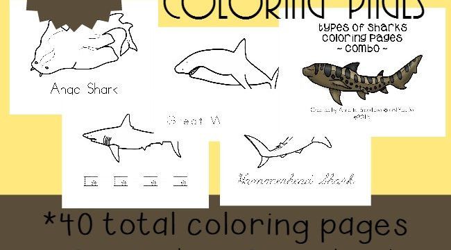 Types of Sharks Coloring Pages & Emergent Readers