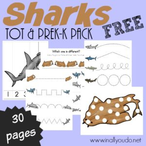 Learn more about 10 types of sharks with these FUN & FREE Shark Puzzles and Tot & PreK-K Pack!! Includes activities for 2yrs - 5th grade! :: inallyoudo.net