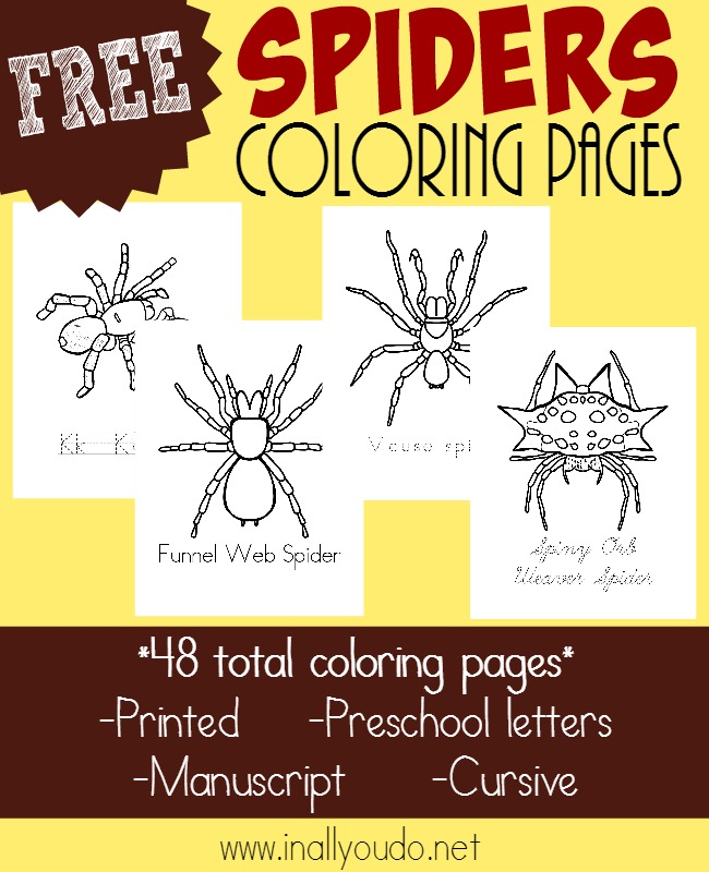 Free Printable Yellow Coloring Pages : Types of spiders coloring pages {free printables} in all you do