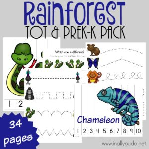 Little ones will LOVE this fun-filled puzzle & activity pack all about the Rainforest Animals. {34 total pages} :: www.inallyoudo.net