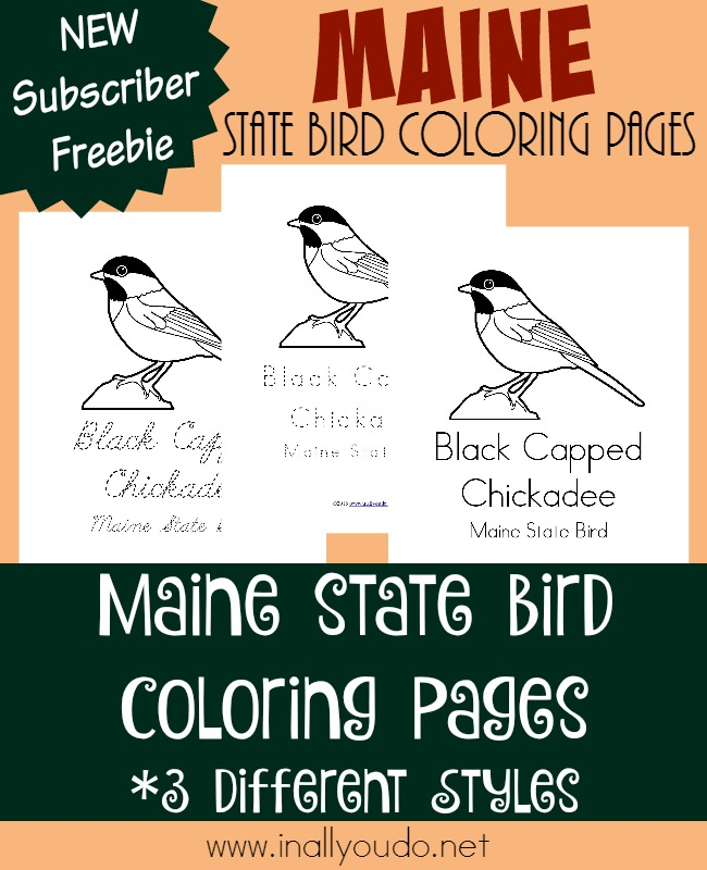 Learn more about the most northern state in the lower 48 and their state bird with today's FREE Coloring Pages! :: www.inallyoudo.net