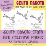 Across the USA: South Dakota