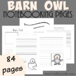 Barn Owl Notebooking Pages {84 pages}