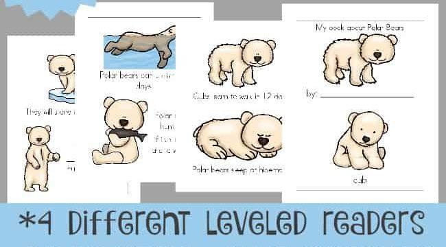 Life of a Polar Bear Emergent Readers