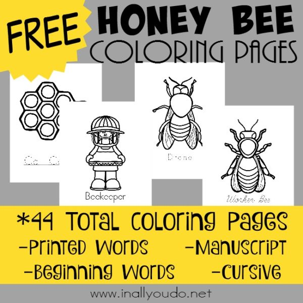 Spring is just around the corner and now is the perfect time to learn all about Honey Bees! Grab these FREE Coloring Pages! {44 pages} :: www.inallyoudo.net