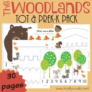 If you're studying the woodlands this year, don't miss this ADORABLE Tot & PreK-K Pack for your little learners! {30 pages} :: www.inallyoudo.net