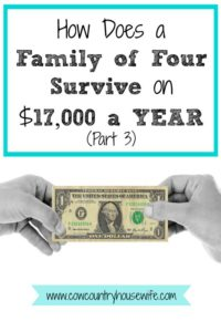 How-Does-a-Family-of-Four-Survive-on-17000-a-YEAR-Part-3-Cow-Country-Housewife