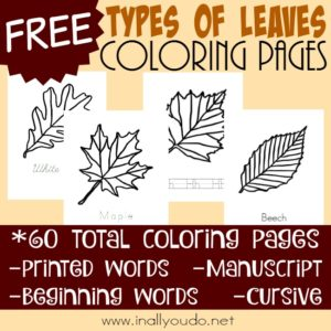 Arbor Day is the last Friday in April. Celebrate by learning how to identify 15 different types of leaves with these FUN coloring pages! :: www.inallyoudo.net