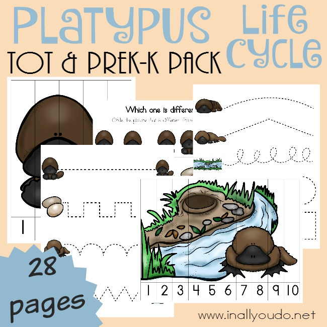 Platypus Tot & PreK-K Pack