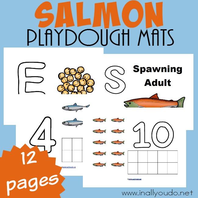 Salmon Life Cycle Playdough Mats