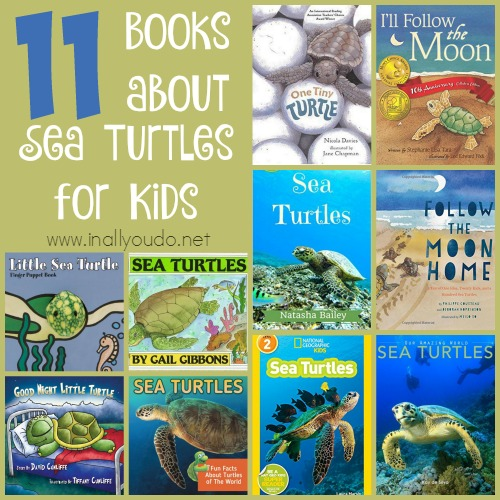 Sea Turtles Collage
