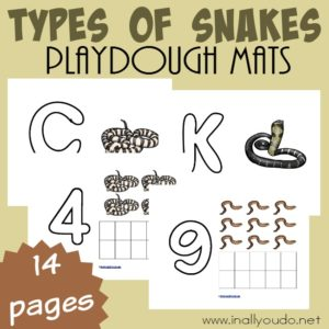 """These Types of Snakes are a great way to help kids work on their fine motor skills as well as letter and number recognition all while """"playing"""" and having fun! Get them FREE today! :: www.inallyoudo.net"""