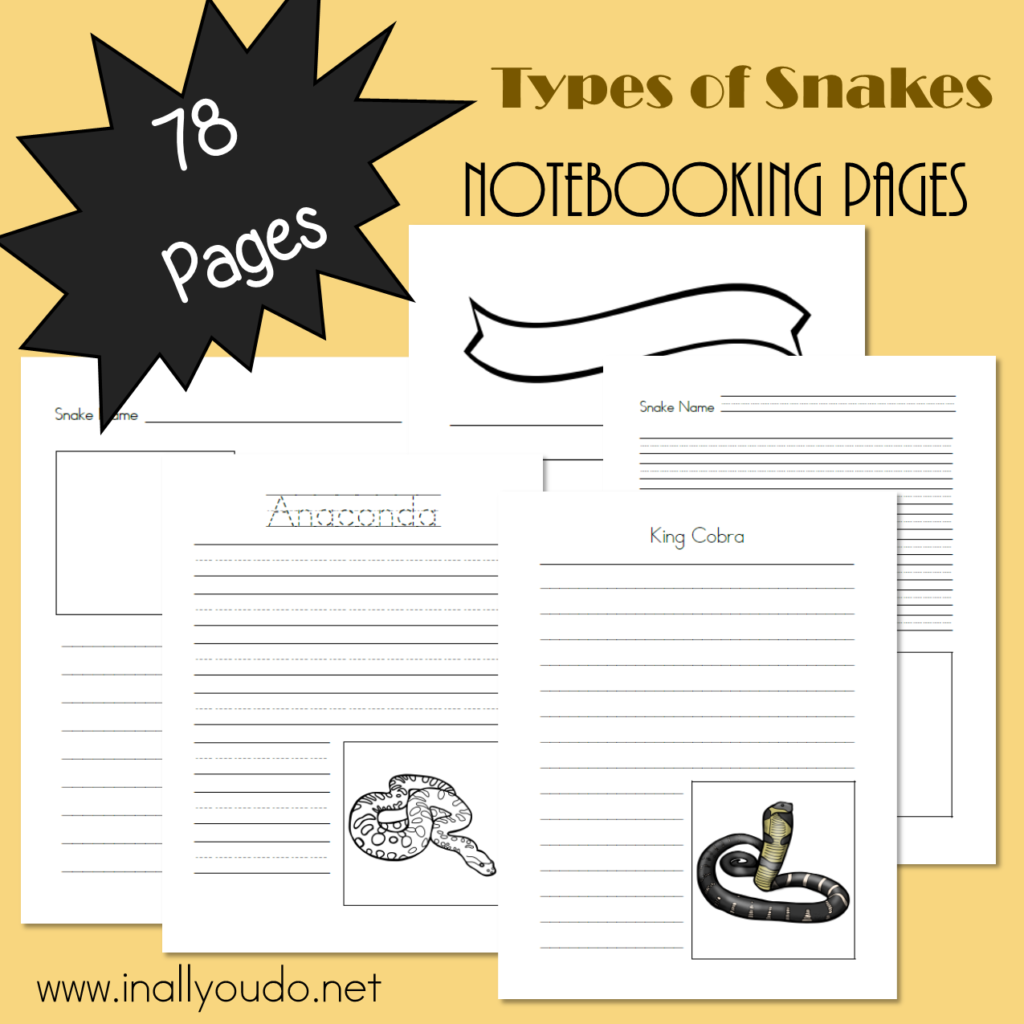 Types of Snakes Notebooking Pages