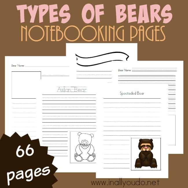 Types of Bears Notebooking Pages