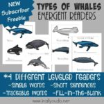 Types of Whales Emergent Readers