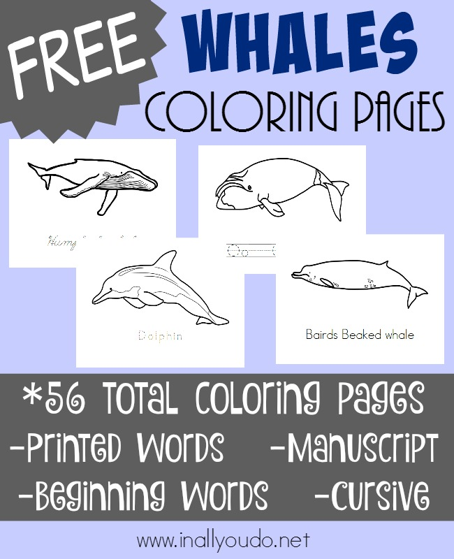 Have you ever been whale watching? Well, you might not be able to go, but you can introduce them to your kids with these fun coloring pages! :: www.inallyoudo.net