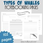 Types of Whales Notebooking Pages