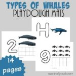 Types of Whales Playdough Mats