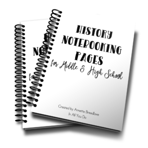 This 18-page notebooking set is the perfect addition to any middle or high schooler's history studies. These Notebooking Pages are generic so that you can use them with any history lesson, unit study or even after a field trip. :: www.inallyoudo.net